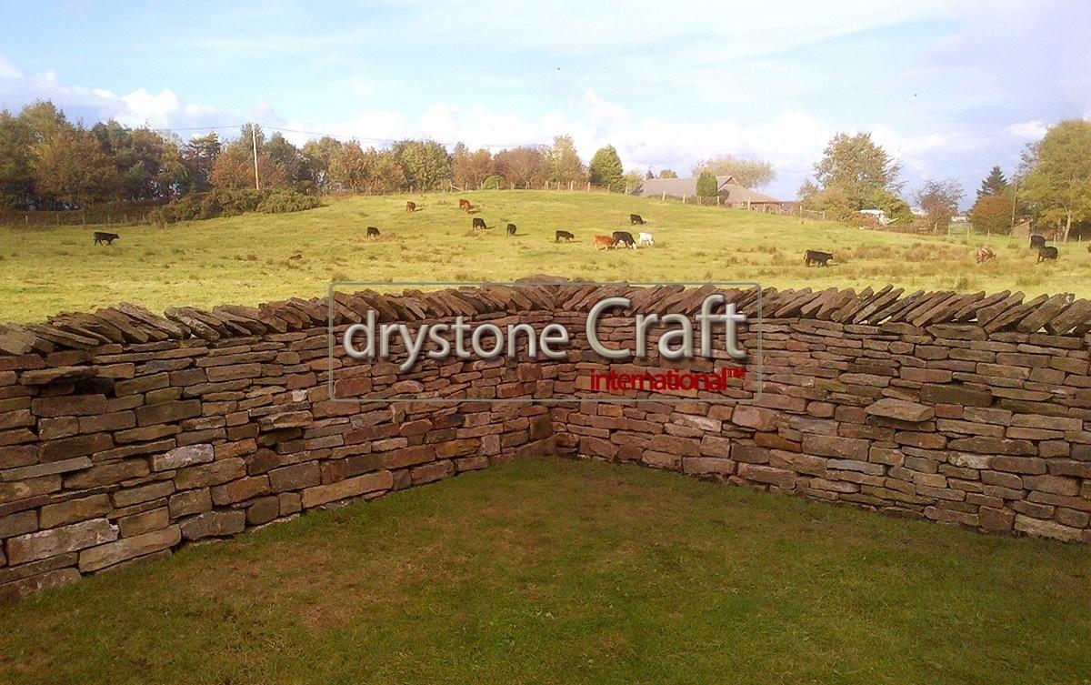 Livestock dry stone wall lancashire