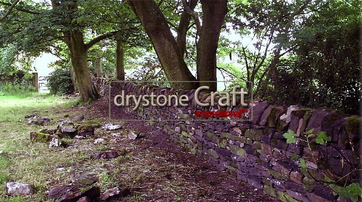 gritstone_dry_stone_wall mp